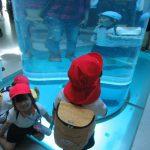 日本平動物園楽しかったね\(^-^)/